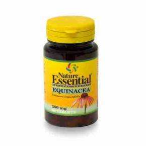 Equinacea Angustifolia Nature Essential