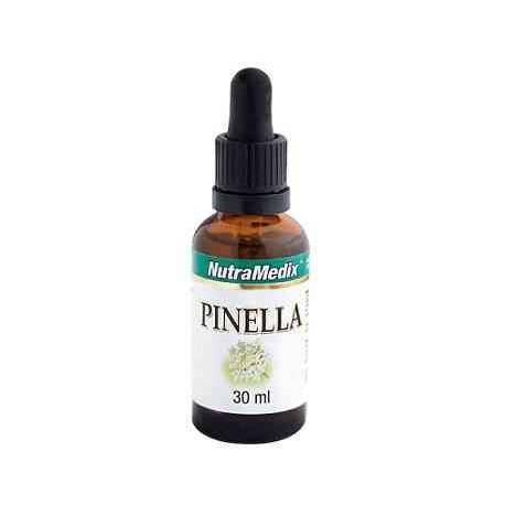 Pinella-Anis-verde