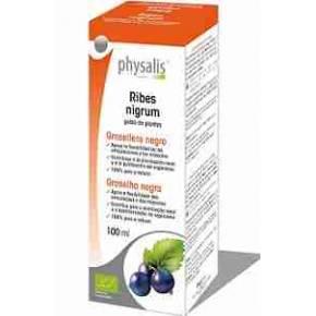 Ribes Nigrum Bio (Grosellero Negro) Physalis 100 ml