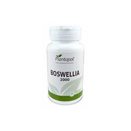Boswellia 2000 Plantapol 30 comprimidos