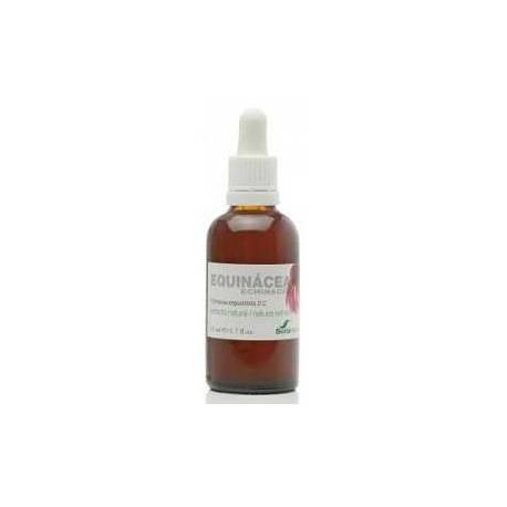Equinacea Extracto Soria Natural 50 ml