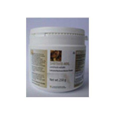 Shiitake MRL (Lentinus Edodes) 90 comprimidos